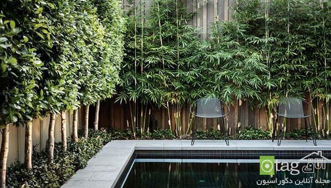 مناسب ترین گیاهان برای حصار دور حیاط خانه بهمراه عکس