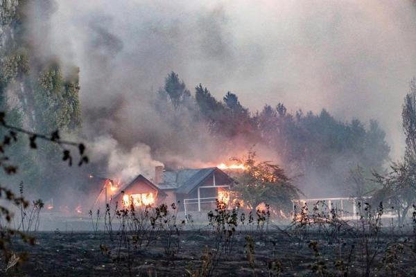 آتش سوزی در جنگل های آرژانتین
